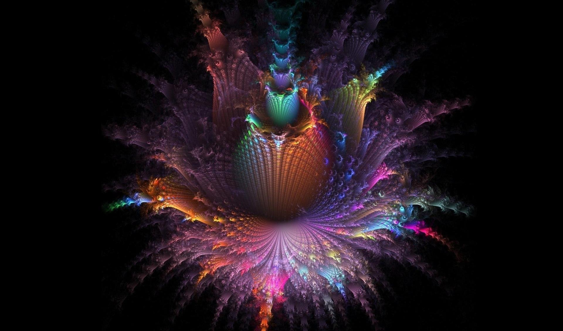 Amazing colors on the fractal flower wallpapers HD quality
