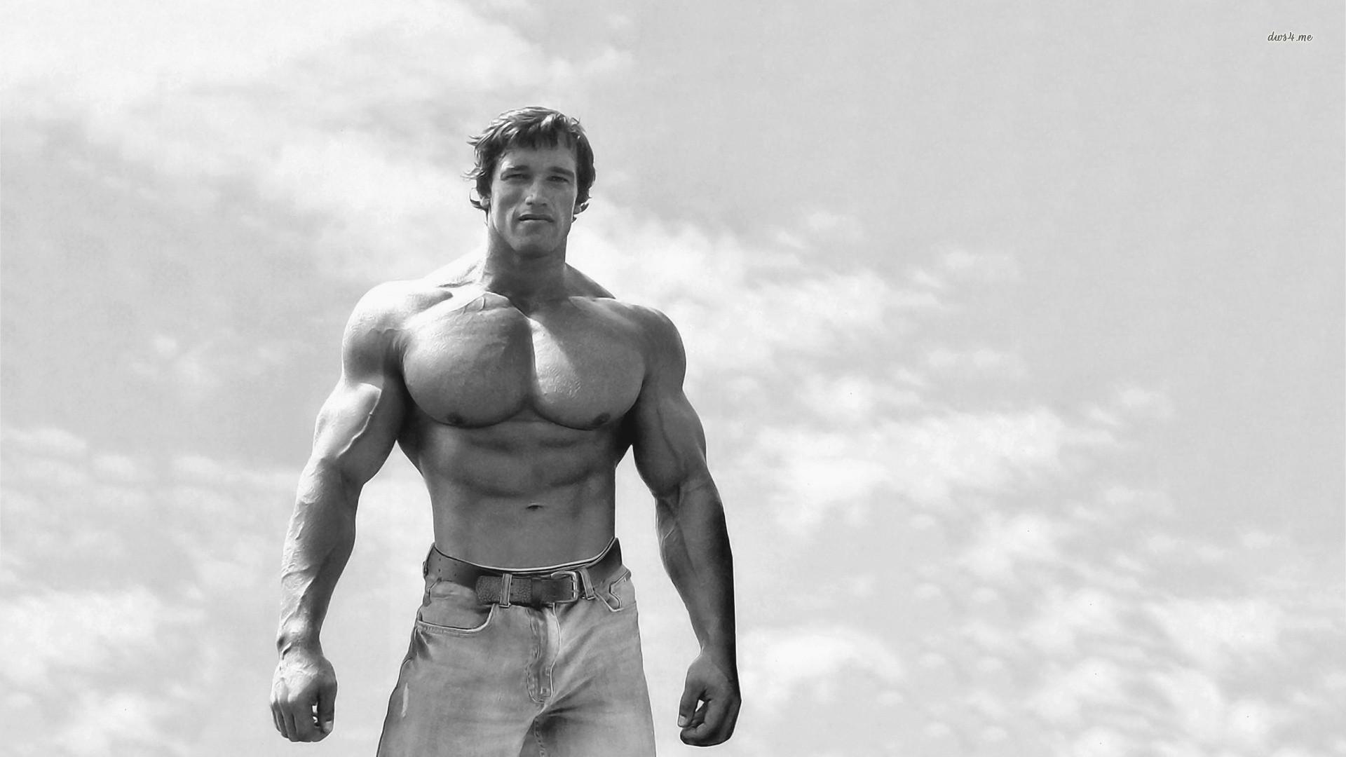 Arnold Schwarzenegger wallpapers HD quality