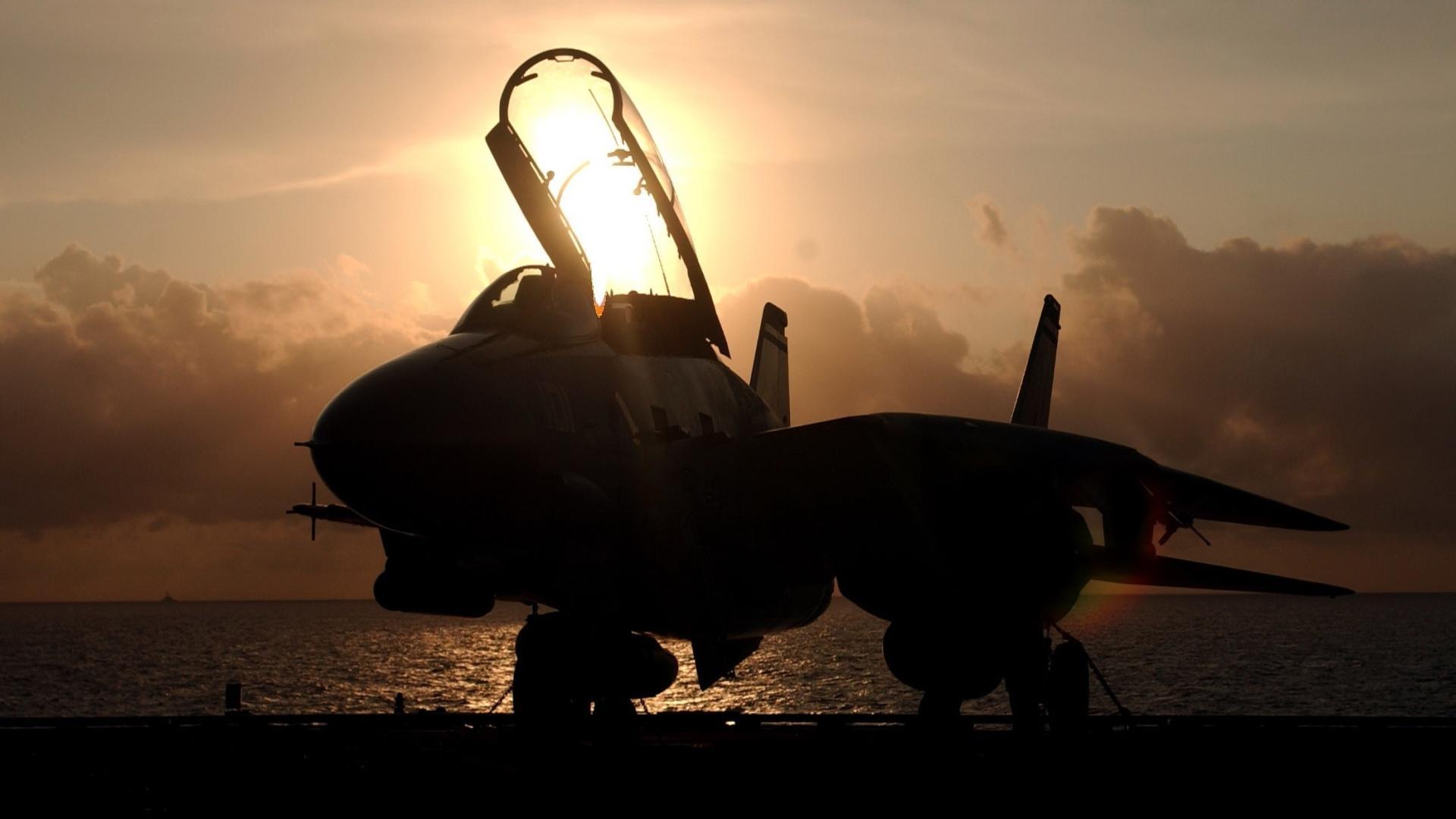 Grumman F-14 Tomcat wallpapers HD quality