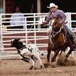Rodeo full hd