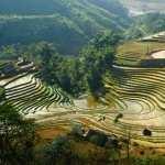 Vietnam pics