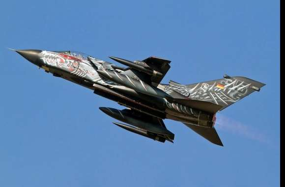 Panavia Tornado wallpapers hd quality