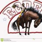 Rodeo pics