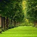 Landscape high definition photo