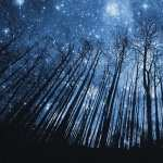 Starry Night download