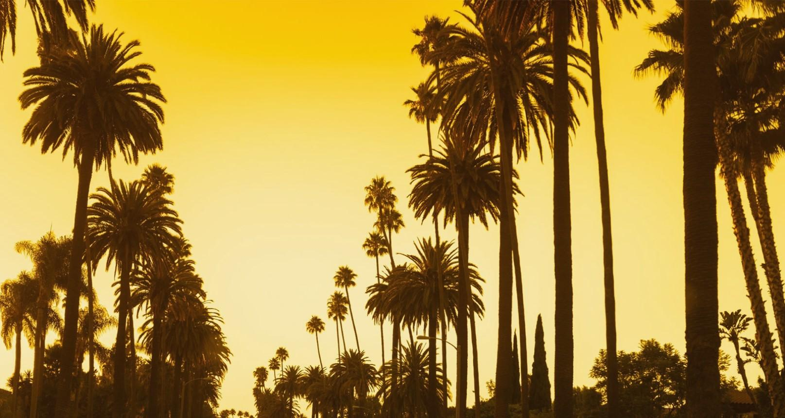 Los Angeles wallpapers for iphone