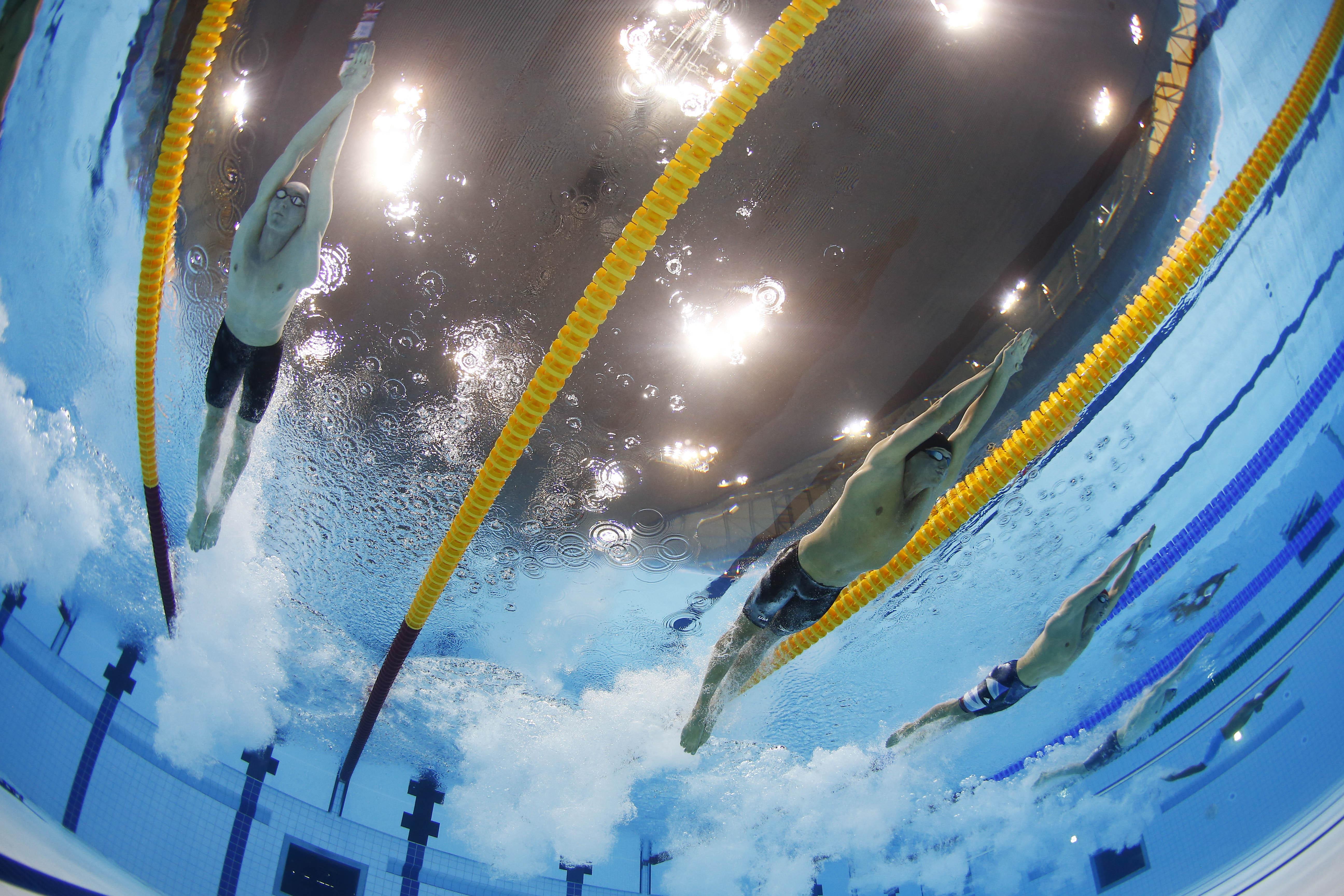 пловцы скачать