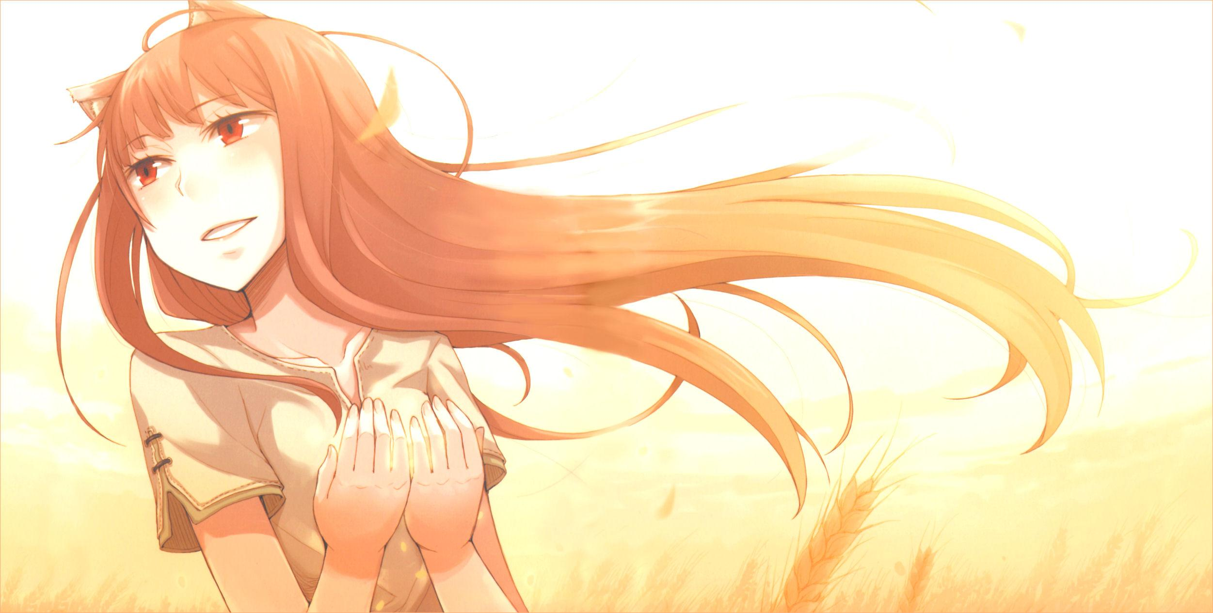 Spice And Wolf wallpapers HD quality