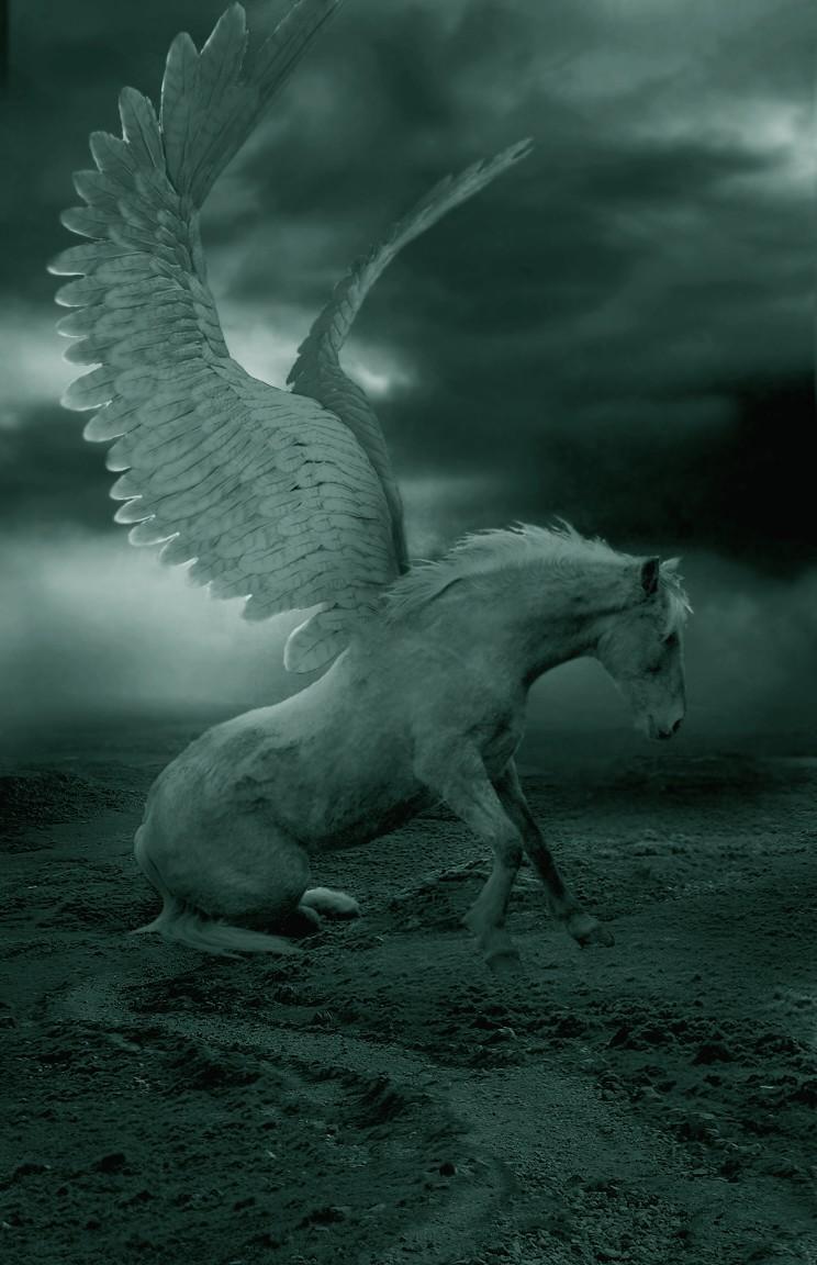 Pegasus Wallpaper HD Download
