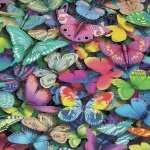 Butterflies wallpapers for android