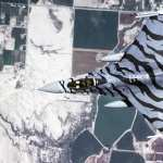 General Dynamics F-16 Fighting Falcon photo