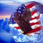 American Eagle Day wallpapers