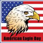 American Eagle Day desktop