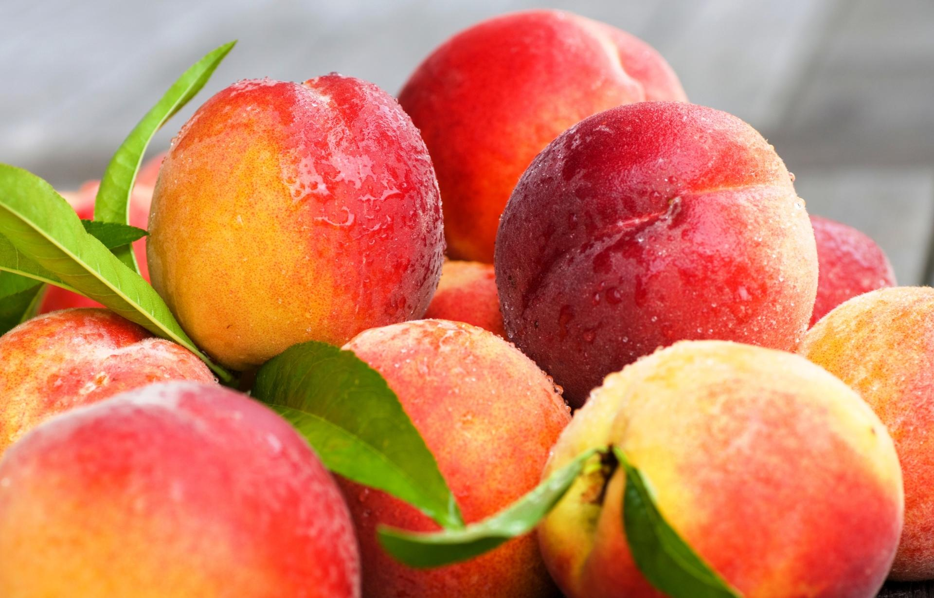Nectarine wallpapers HD quality