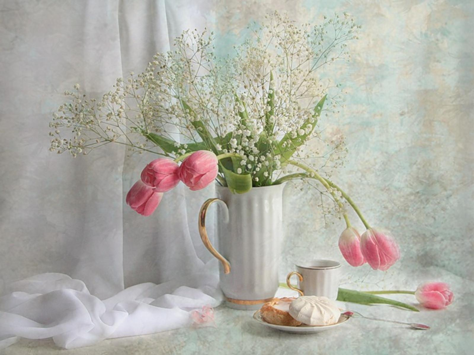 Still Life wallpapers HD quality