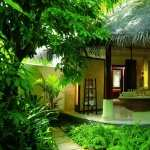 Tropical Photography photo