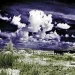 Infrared Photography hd