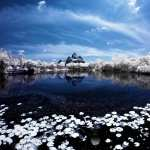 Infrared Photography free