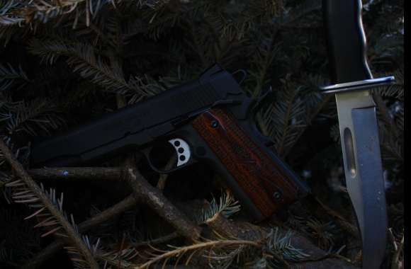 Springfield Armory 1911 Pistol wallpapers hd quality