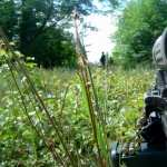 Assault Rifle image