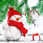 Snowman Photography wallpapers hd