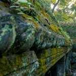 Angkor Wat new wallpapers