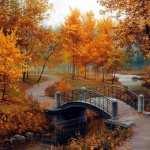 Bridge Artistic wallpapers