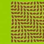 Illusion Artistic wallpaper