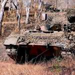 Leopard 2 wallpapers