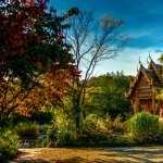 Pagoda free