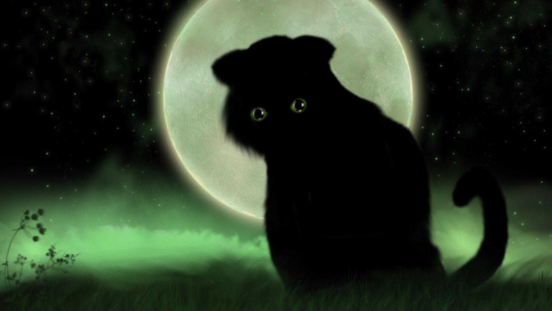 Cat Fantasy wallpapers HD quality