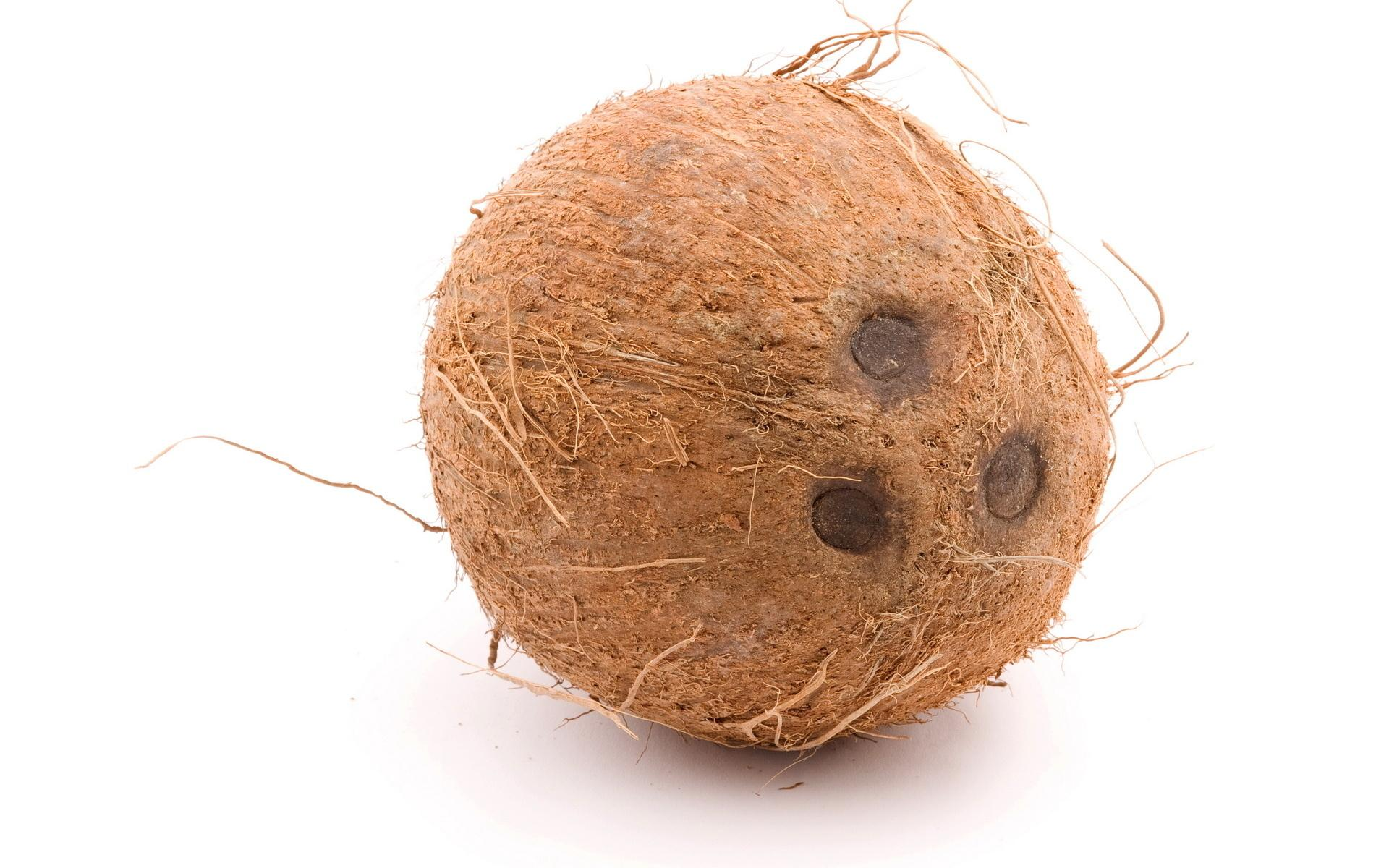 Coconut wallpapers HD quality