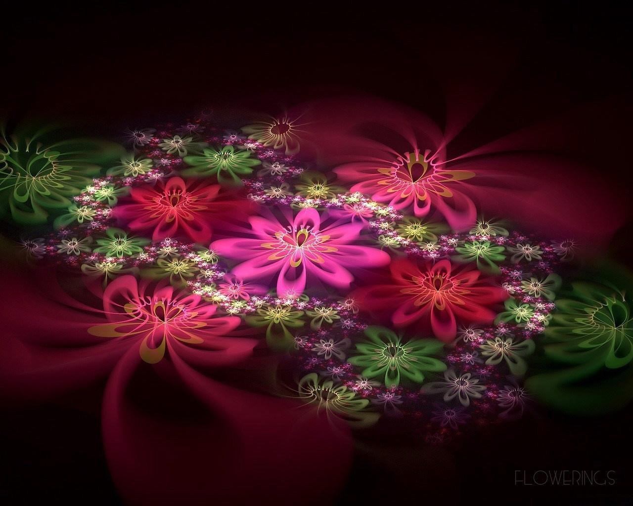Flower Abstract wallpapers HD quality
