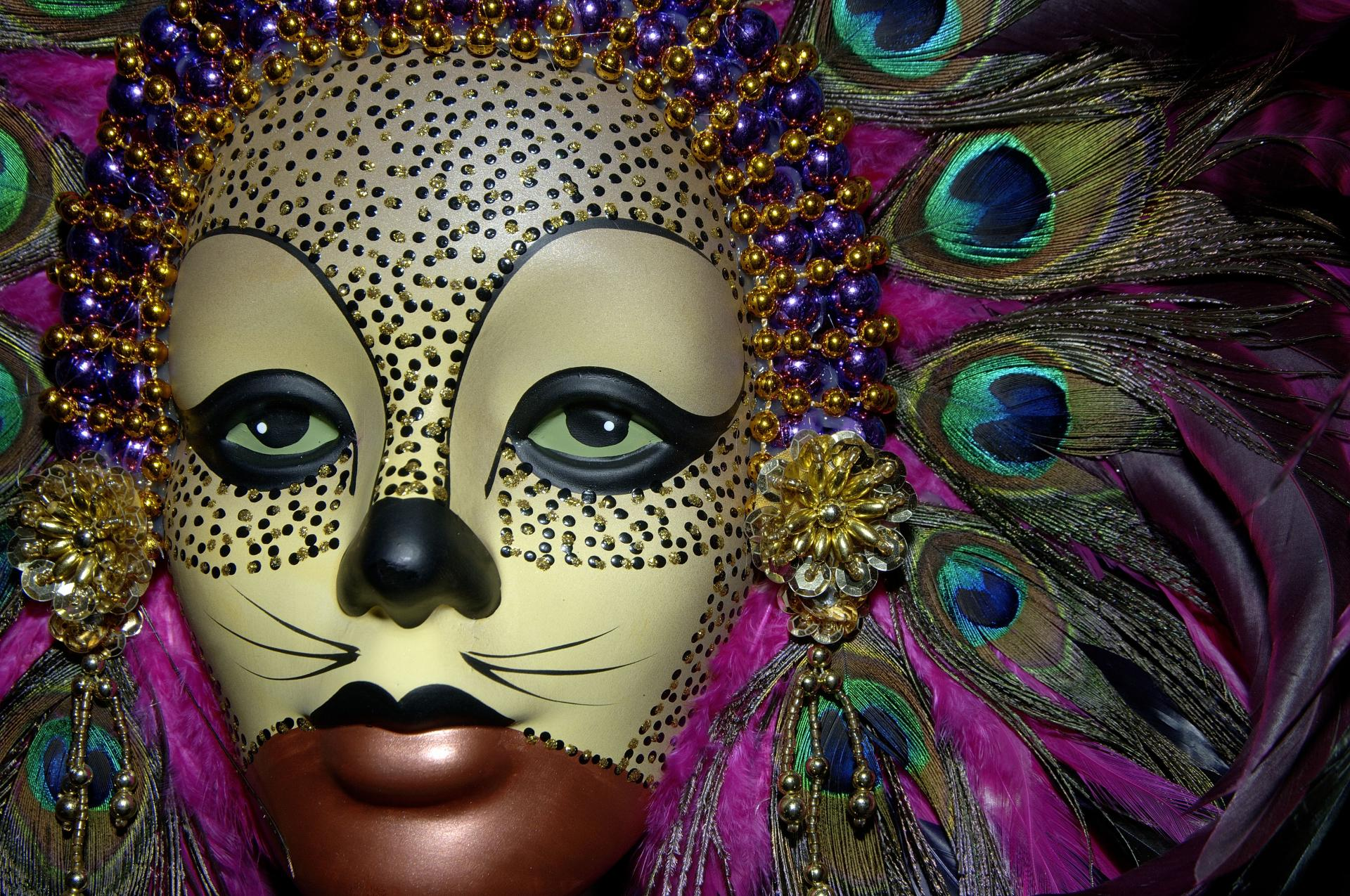 Mask Photography wallpapers HD quality
