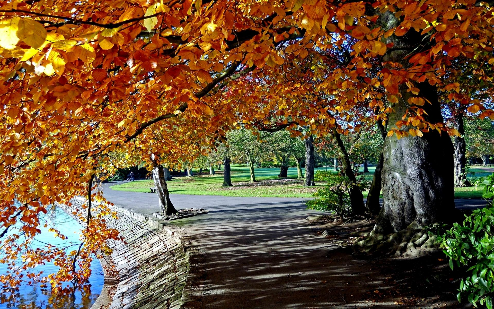 Park Photography wallpapers HD quality