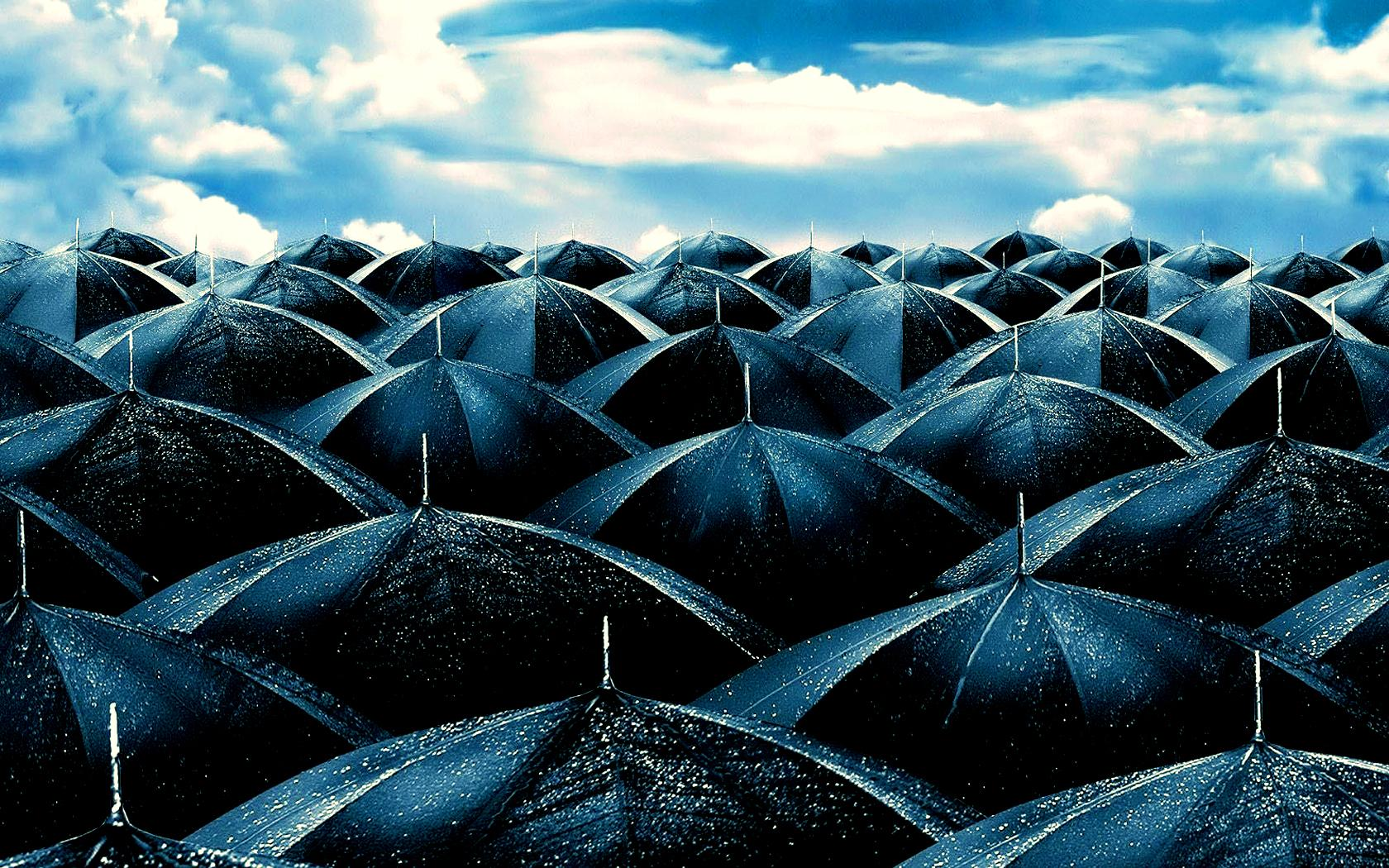 Umbrella Photography wallpapers HD quality