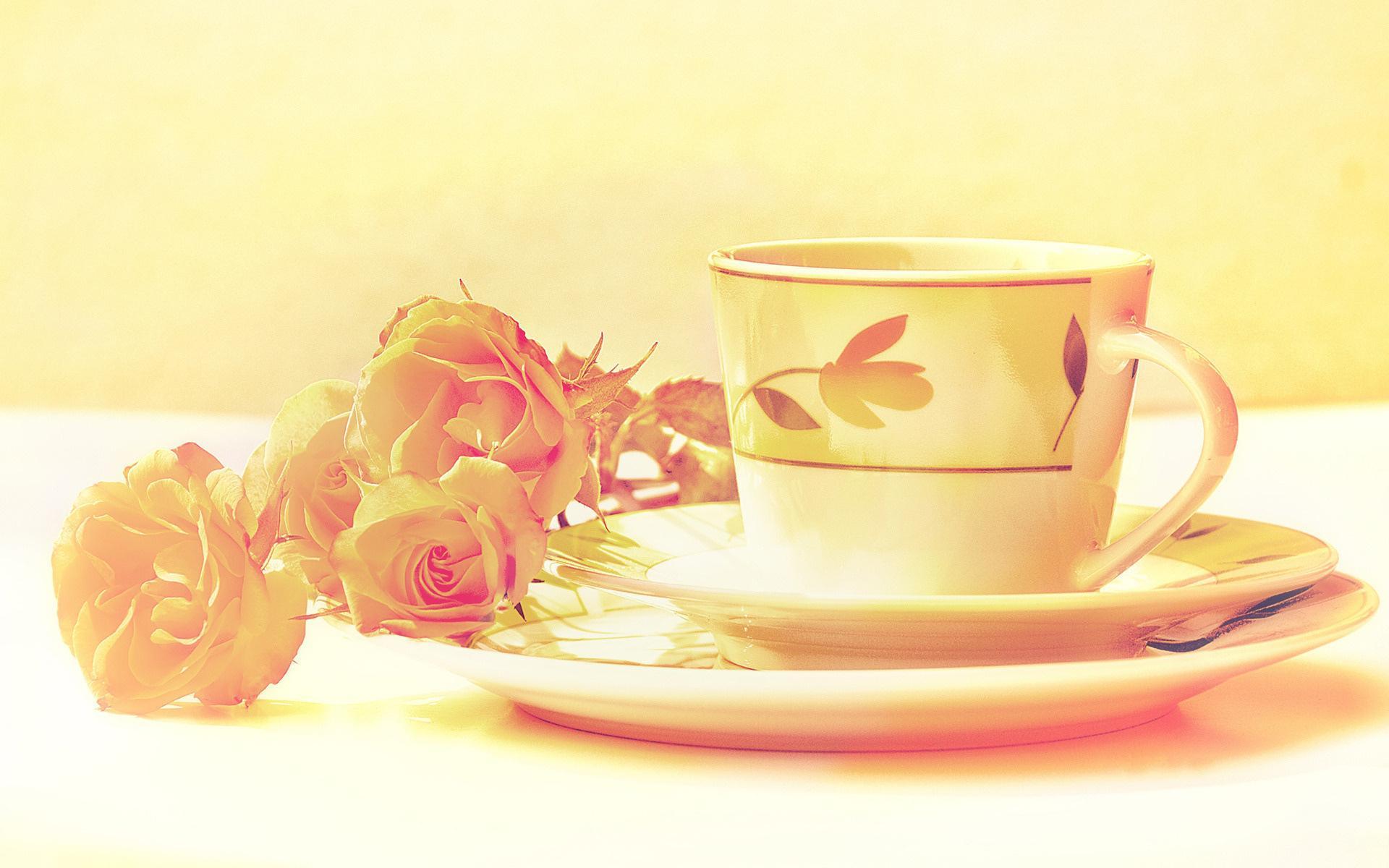 нежные розы в стаканах загрузить