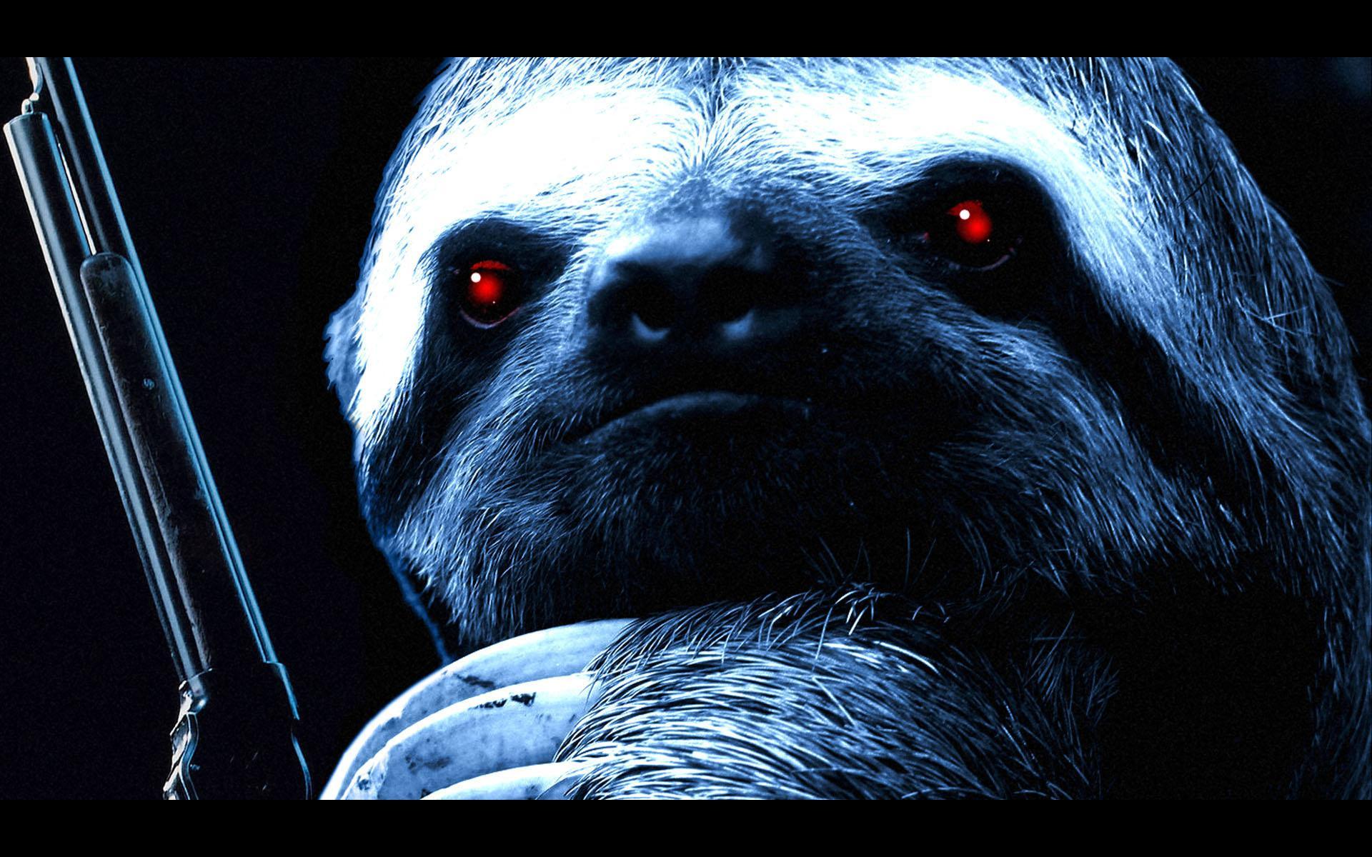 Sloth Wallpaper HD Download