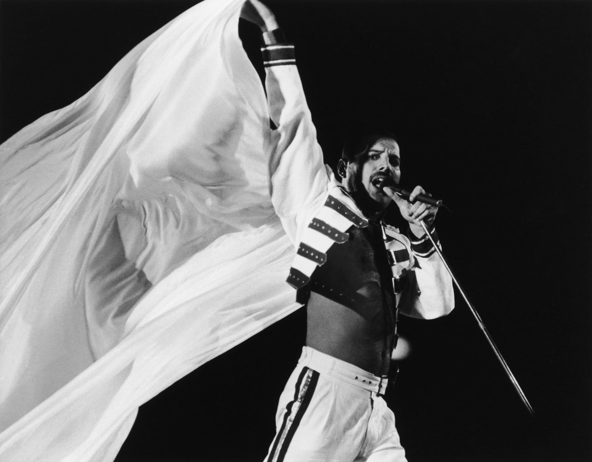 Freddie Mercury Wallpaper Hd Download
