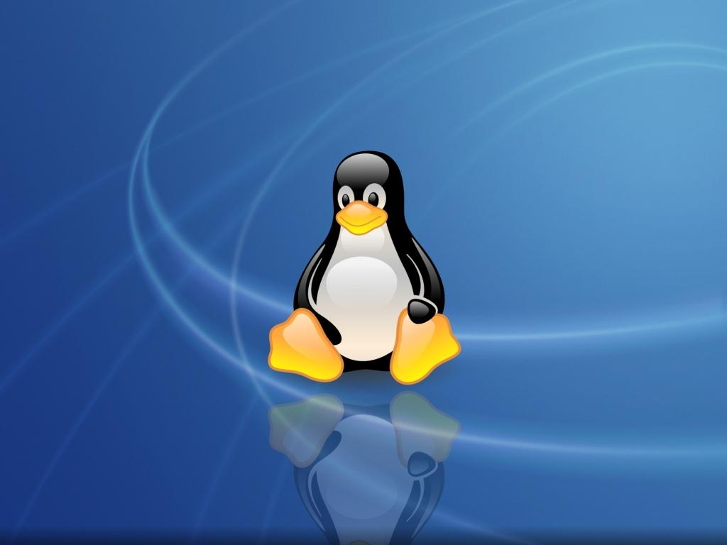 an analysis of the future of enterprise linux operating system in the computer science of unix This definition explains what an operating system computer science linux is a unix-like operating system that was designed to provide personal computer.