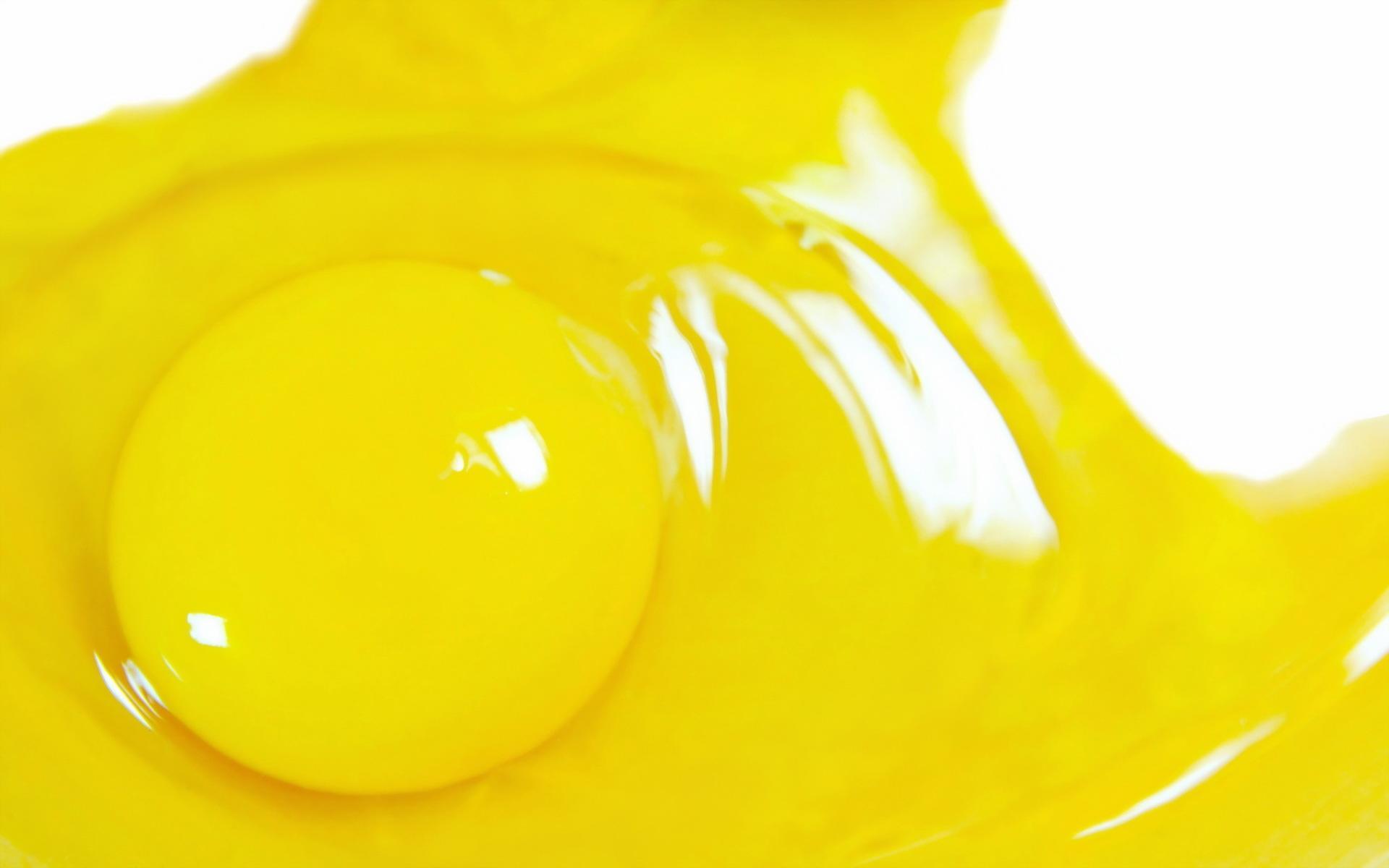 еда желток яйца food the yolk eggs  № 2999697 бесплатно