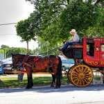Horse Drawn Vehicle photo