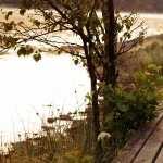 Nature Photography hd photos