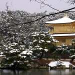 Oriental Photography hd
