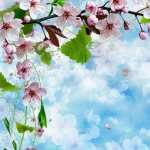 Spring Artistic wallpapers hd