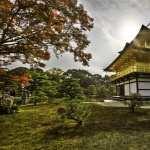 Kinkaku Ji Temple wallpapers hd