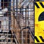 Radioactive Sci Fi wallpapers for desktop