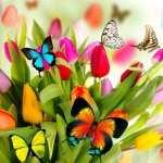Spring Artistic desktop wallpaper