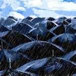 Umbrella Photography desktop wallpaper
