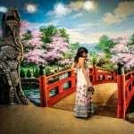 Spring Artistic hd